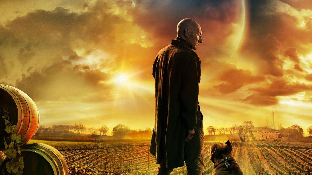 Jean-Luc Picard debout dans une exploitation viticole.