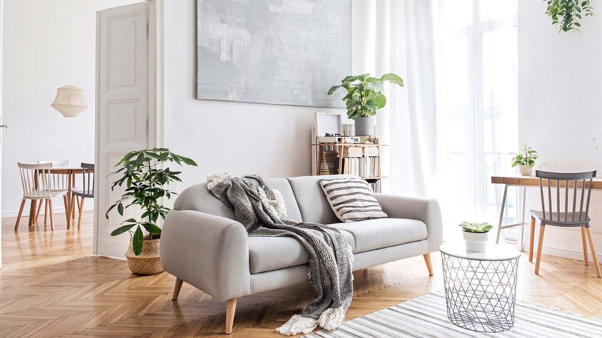 Un salon bien éclairé décoré avec des meubles et des plantes modernes.