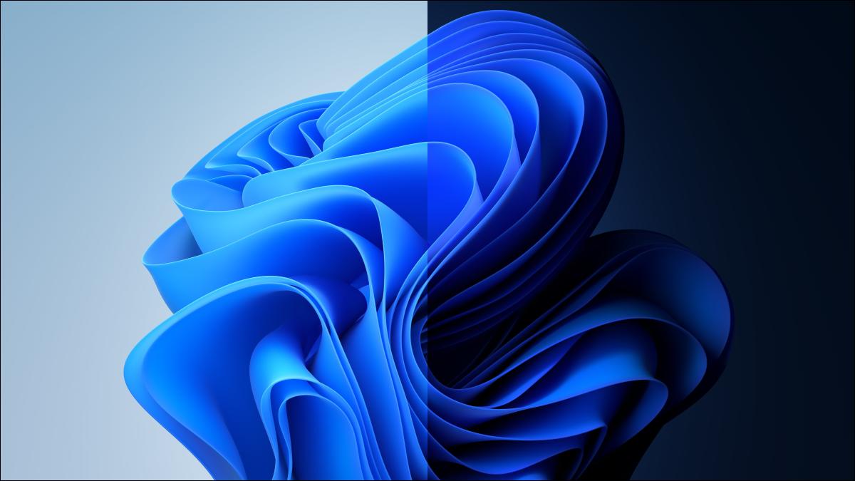 Les arrière-plans clairs et sombres de Windows 11.